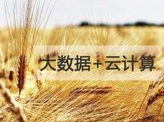 全国两会农业大数据被重提