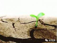 都知道化肥行业要转型,到底往哪儿转?