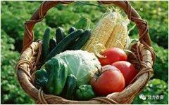 发展绿色生态农业,抓准三大板块很重