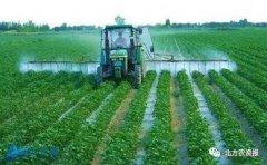让水溶肥效果翻番又省钱的方法