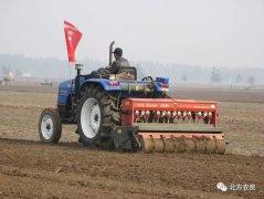 小麦播种期防治病虫害的关键技巧一定