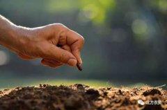 专家告诉你,我国各地区耕地质量面临