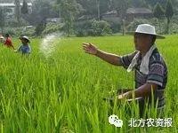 这些化肥、生物菌肥、有机肥的误区,