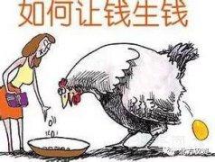 """农业发展也要""""借鸡生蛋""""?!"""