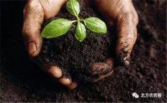 农资行业的风口在哪里?