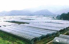 气候多反复,农业生产需防倒春寒