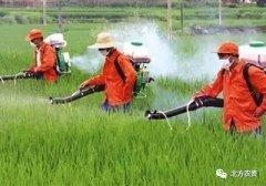 农业部印发《2018年种植业工作要点》,关于农药讲了什么?!