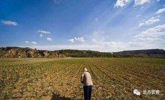 新一轮农地制度改革提速扩面,到底给农民带来