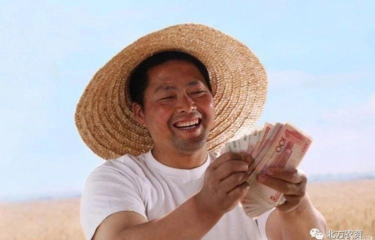 说一千、道一万,增加农民收入是关键!