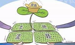 """企业赚,农民亏 土地流转咋定农民收益""""价"""""""