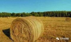 农资行业一记响亮的警钟,你还没被敲