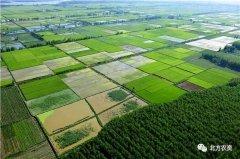新理念引领新发展,农业补贴政策向推进耕地质
