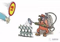 10月1日起这几种农药将禁用!用啥替代?