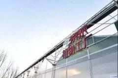 京东植物工厂落成,水培蔬菜成下一个蓝海?