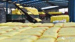 复合肥市场即将盘活,但有个重要前提……