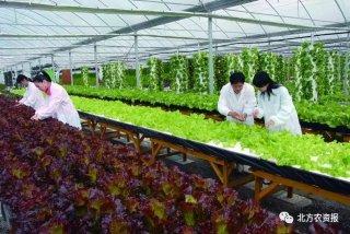 农化服务要求越来越高,今后该如何进行?