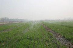 水肥一体化在推广仍面临诸多挑战