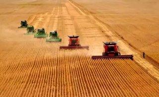 农民合作社该如何做大做强?