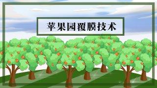 【画说三农】最新行情资讯、农技管理…