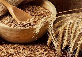 出售新小麦,这些政策措施你了解吗?