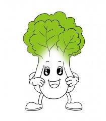 大白菜怎么种才能没有病虫害?