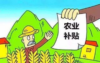 黑龙江省玉米、大豆、水稻补贴即将发放!
