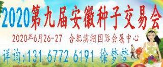 2020 第九届中国安徽国际现代种子交易会