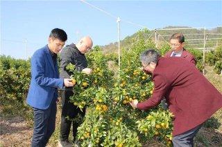 2019年菌美多土壤大健康中国行高峰论坛在桂林举办