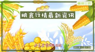 【画说三农】双节备货,粮食走货速度将加快?