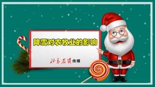 【画说三农】20191220 降雪对农牧业的影响