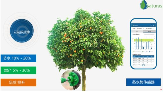 Saturas茎水势传感器,下一代精准灌溉系统