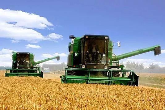 究竟种啥才能挣钱?农产品价格高也不挣钱,又是为