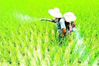 从海外农化巨头年报探析全球农药行业走势