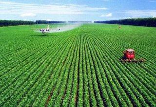 支持农业发展需要实事求是
