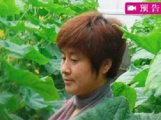 蔬菜之乡寿光专家直播间坐诊开方!