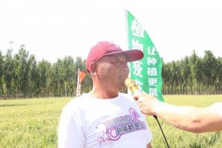 绿那伸E小麦免追肥高产验证会在河北南宫