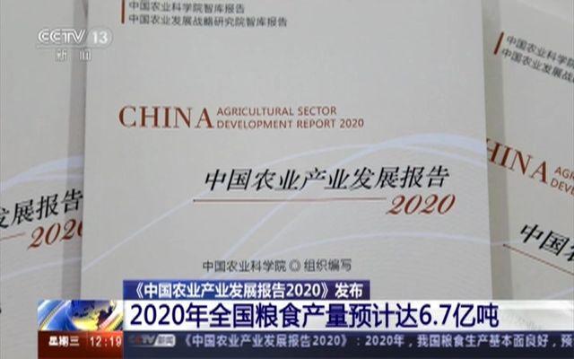 《中国农业产业发展报告2020》发布
