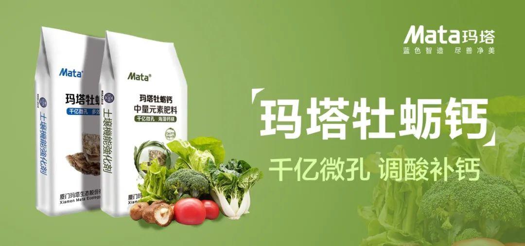 蔬菜缺钙有何表现?该如何补钙?