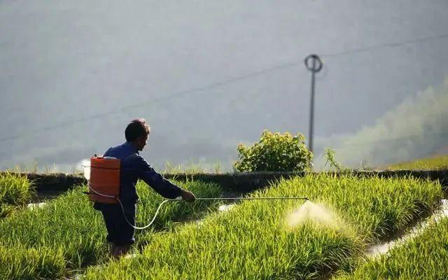 高温季节,一定要做到科学、安全使用农