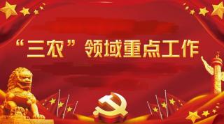 """农业农村部研究部署""""三农""""领域重点工"""