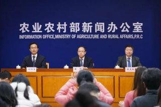 元旦春节期间,农产品市场形势如何?